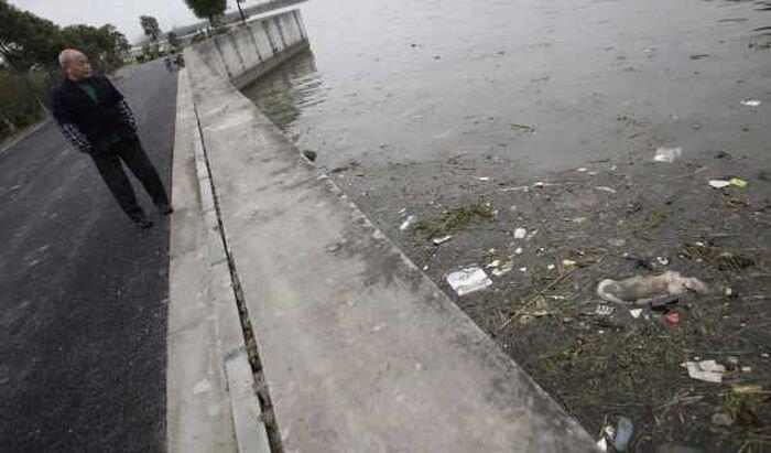 2 800 мертвых свиней плавают в китайской реке (8 фото)
