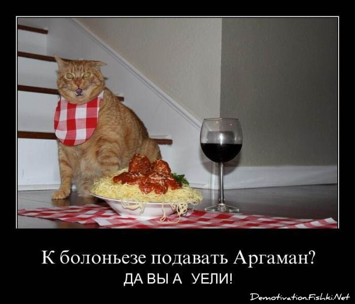 Демотиваторы, часть 354. от zubrilov за 15 марта 2013