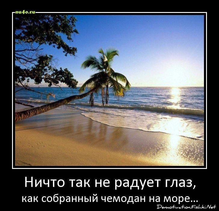 Демотиваторы, часть 356. от zubrilov за 20 марта 2013