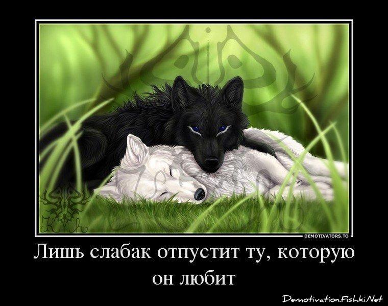 Демотиваторы, часть 357. от zubrilov за 22 марта 2013