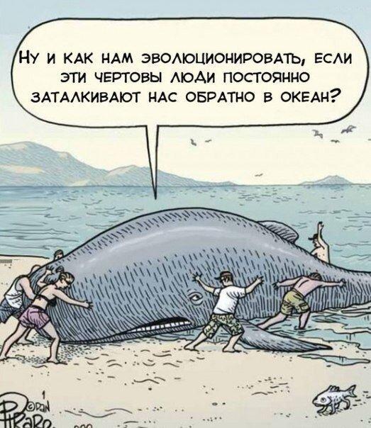 Смешные картинки от zubrilov за 22 марта 2013