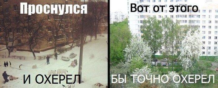 Фото онлайн от zubrilov за 26 марта 2013