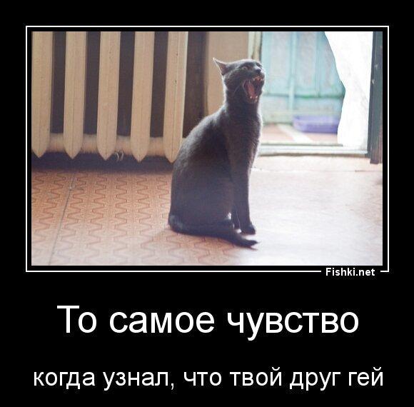 То самое чувство от zubrilov за 28 марта 2013