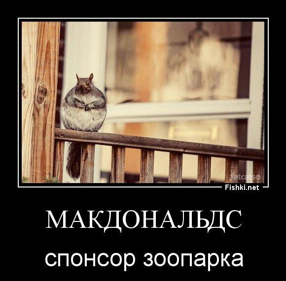 Макдональдс от zubrilov за 28 марта 2013