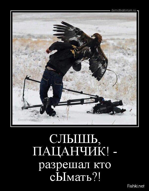 Демотиваторы, часть 361. от zubrilov за 01 апреля 2013