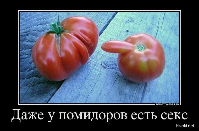 Демотиваторы, часть 364. от zubrilov за 08 апреля 2013