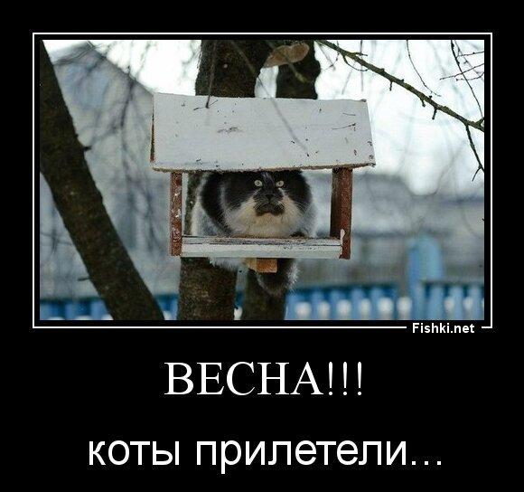 ВЕСНА!!! от zubrilov за 09 апреля 2013