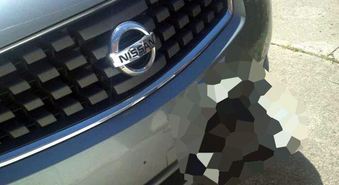 Попробуйте угадать, что в бампере этого Ниссана? (2 фото+видео)