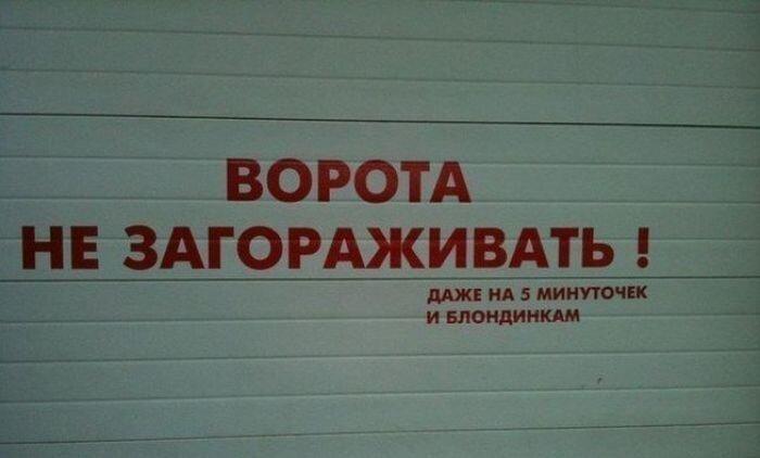 Смешная фотогалерея от zubrilov за 26 апреля 2013