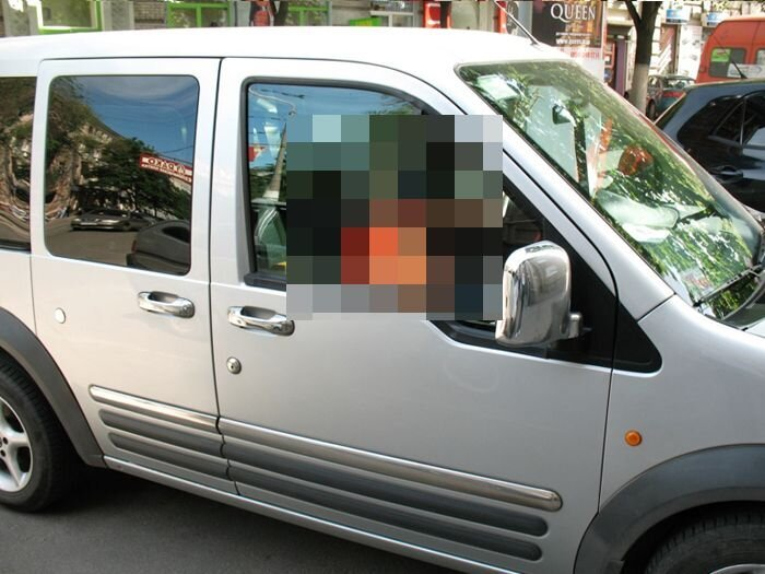 Необычный пассажир (5 фото)