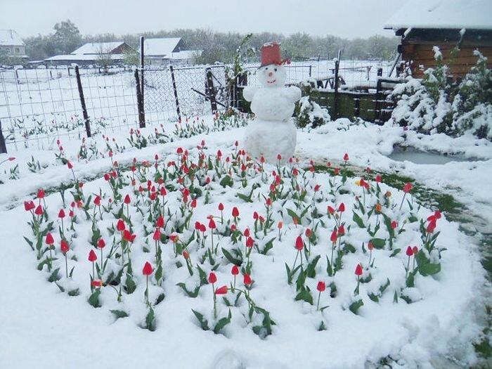 Крутые фотки от zubrilov за 13 мая 2013