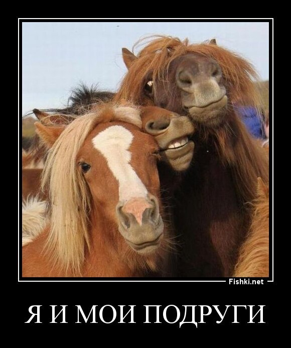 я и мои подруги от zubrilov за 18 мая 2013