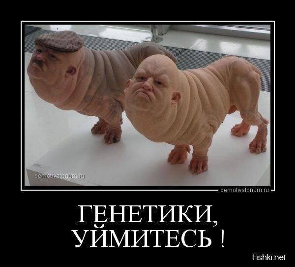 Демотиваторы, часть 379. от zubrilov за 20 мая 2013