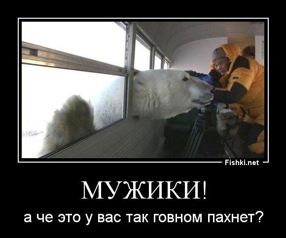 Мужики! от zubrilov за 21 мая 2013