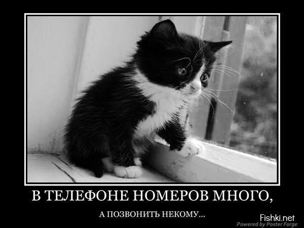 Демотиваторы, часть 380. от zubrilov за 22 мая 2013