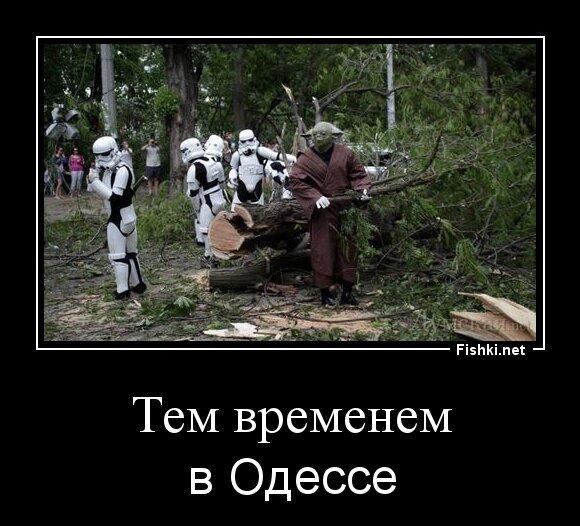 Тем временем от zubrilov за 03 июня 2013
