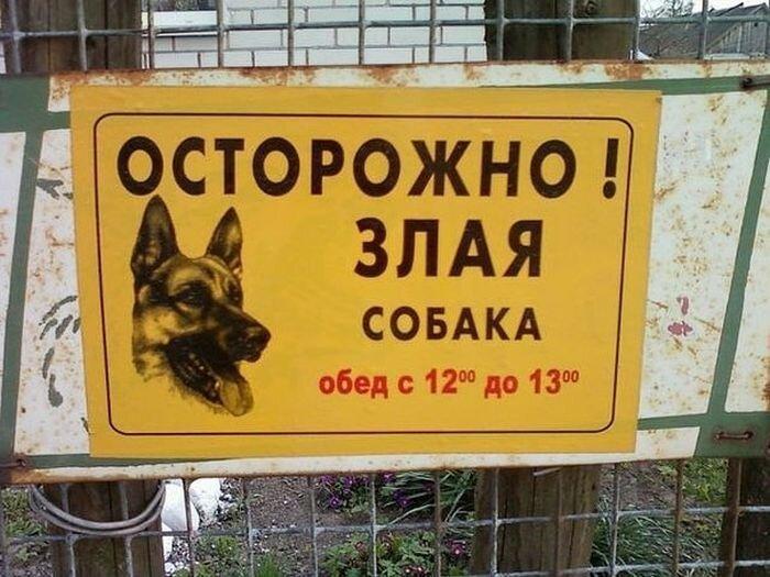 Смешной фотоприкол от zubrilov за 13 июня 2013