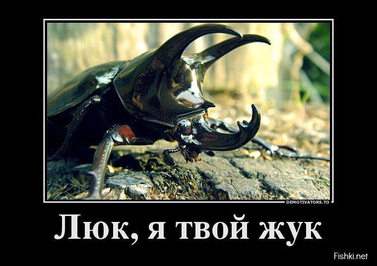 Демотиваторы, часть 389. от zubrilov за 14 июня 2013