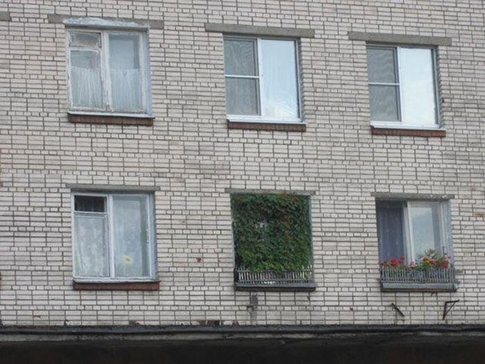 Юмор от zubrilov за 20 июня 2013