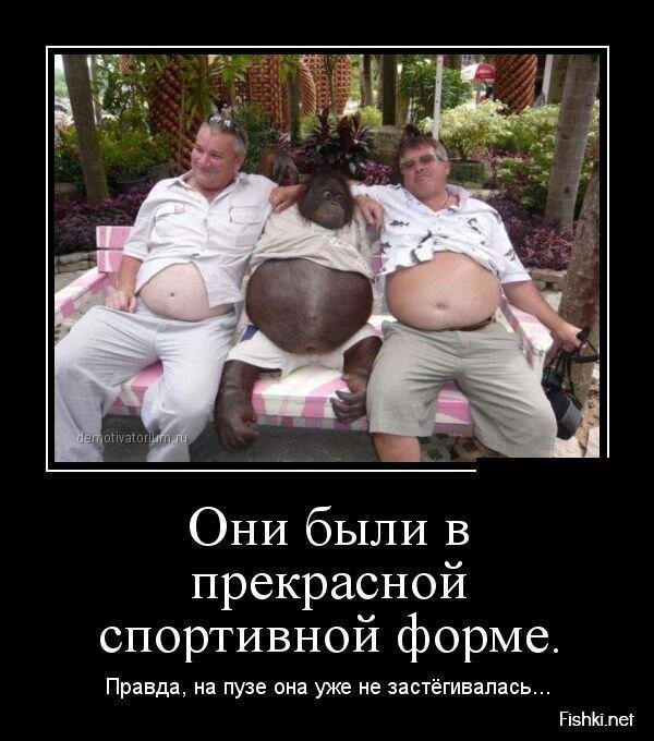 Демотиваторы, часть 407 от zubrilov за 26 июля 2013