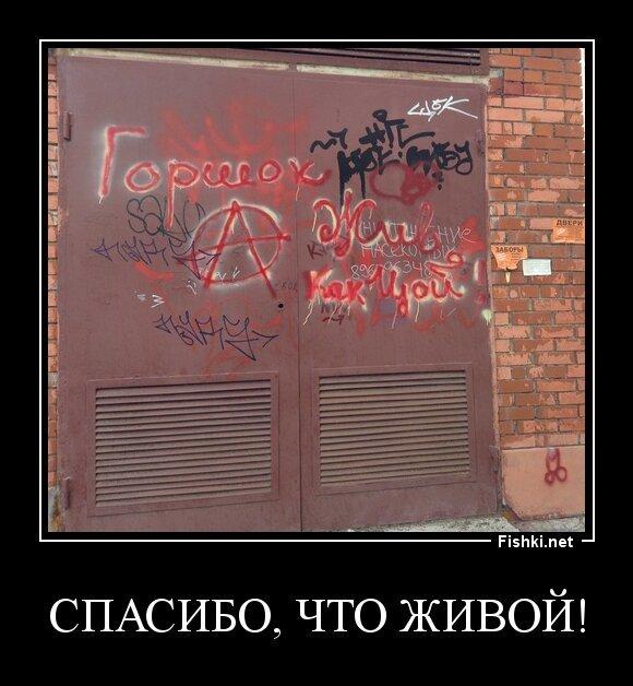 Спасибо, что живой! от zubrilov за 01 августа 2013