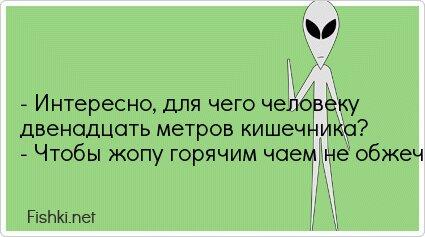 - Интересно, для чего человеку двенадцать метров... от unknown_user за 05 августа 2013