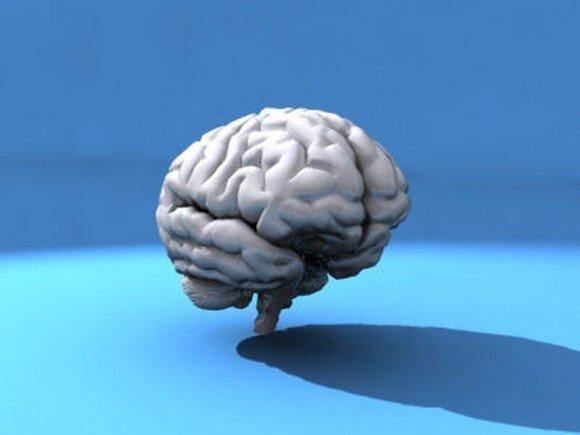 Какого возраста ваш мозг (тест)