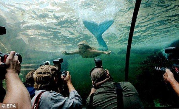 Настоящая русалка (3 фото + видео)