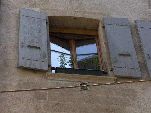 Окно в Европу (9 фото)