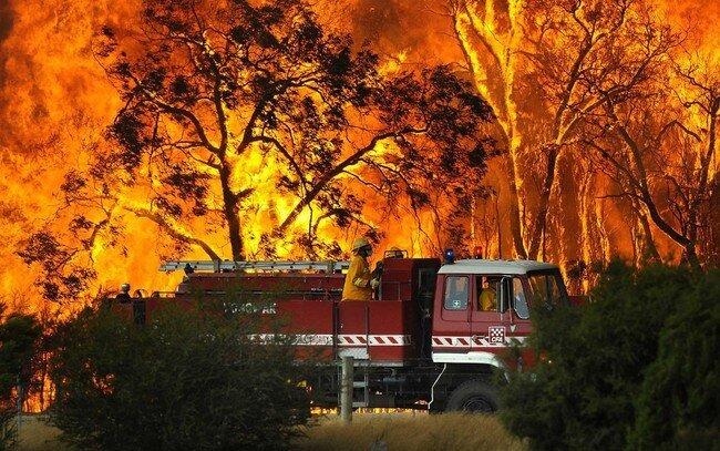 Лесные пожары в Австралии (36 фото)