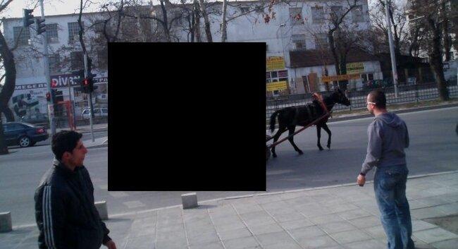 Где-то в Болгарии (3 фото)