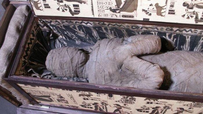 Немецкий мальчик нашел древнюю египетскую мумию на чердаке своей бабушки (4 фото)
