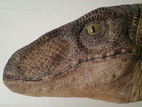 Динозавр в доме - лучший подарок (5 фото)