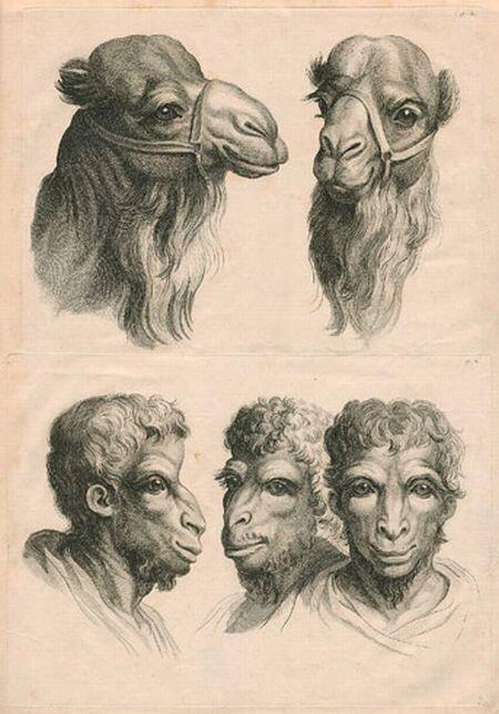 Люди, похожие на животных (20 фото)