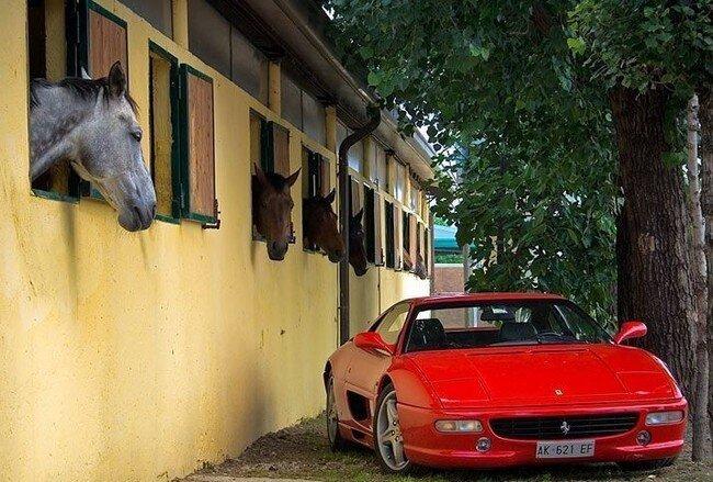 Автомобильный юмор (85 фото)