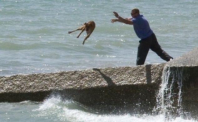 Как псих собаку купал (7 фото)