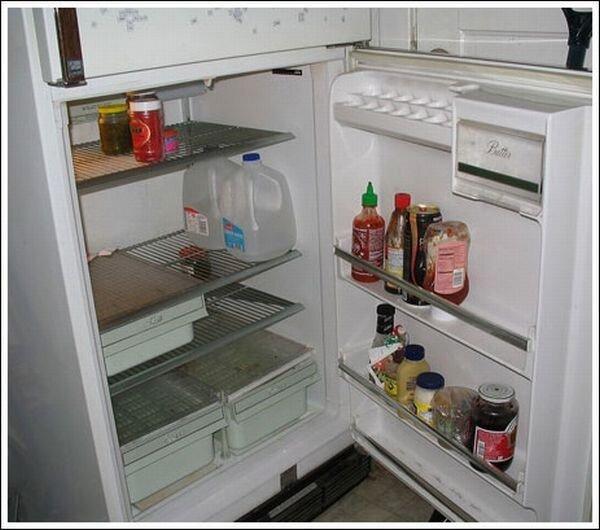 Что у холостяков в холодильниках (22 фото)