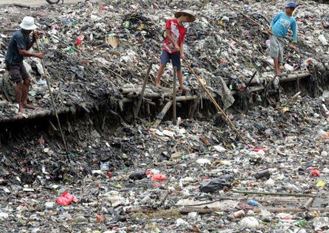 Куда девать мусор? (13 фото)