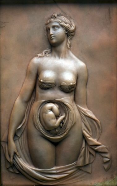 Анатомические скульптуры и барельефы (32 фото)