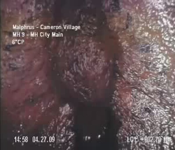 Жесть в канализации (видео)