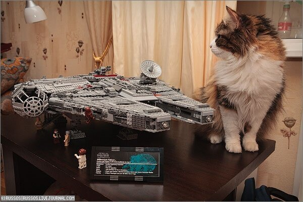 Millennium Falcon из Лего (19 фото)