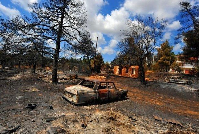 Машины - жертвы греческих пожаров (8 фото)