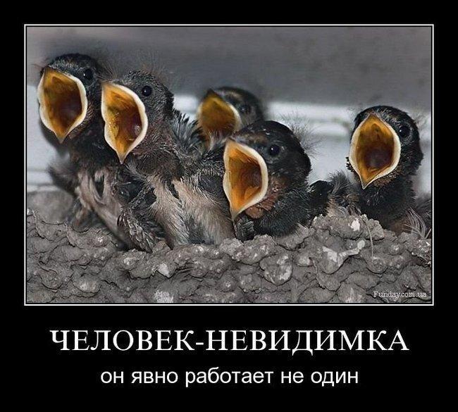 Демотиваторы, часть одиннадцатая (75 фото)