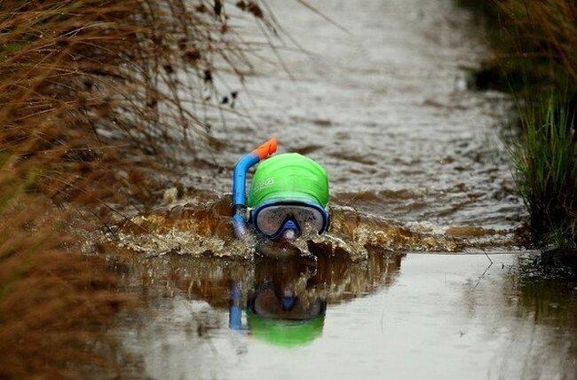 Состязание по заплыву в канаве (22 фото)