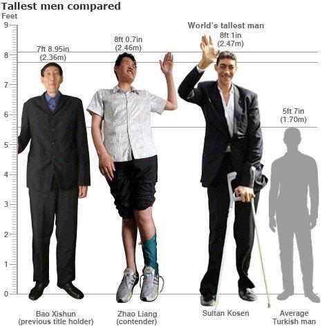Самый высокий человек в мире (55 фото + видео)
