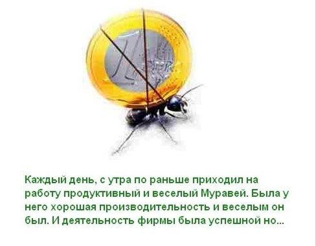 Притча о муравье (12 фото)