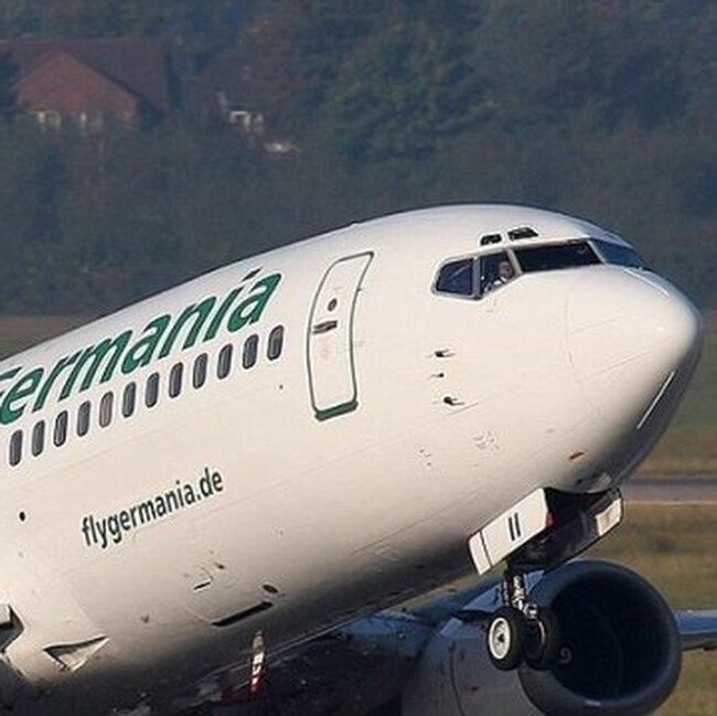 Птицы атакуют самолеты (3 фото)