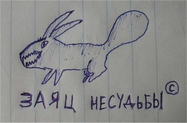 Заяц несудьбы (13 фото)