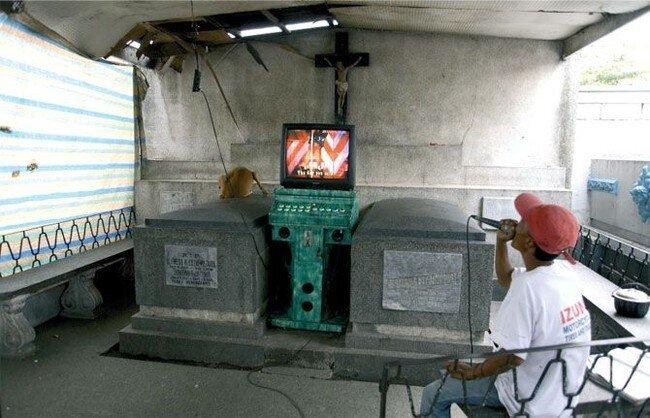 Жизнь на кладбище (11 фото)