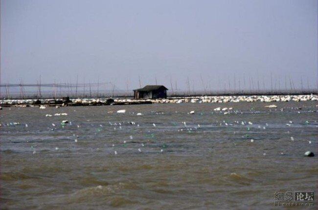 Плавающая деревня (11 фото)